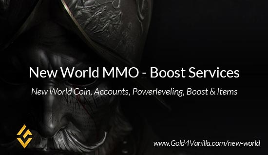 New World Profession Boost Services